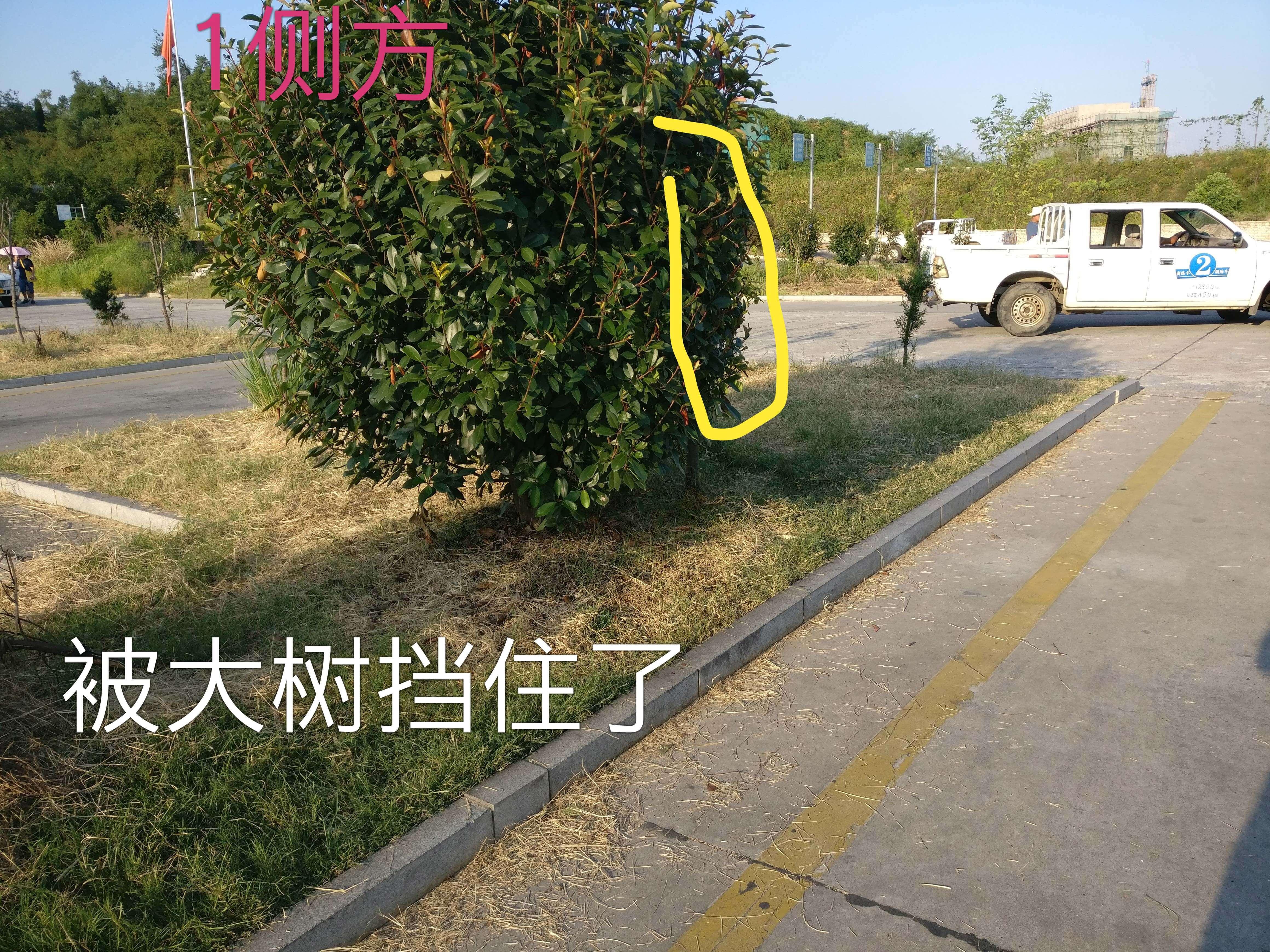 江西省庐山市星子科目二侧方位停车一
